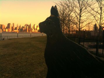 A dogs dream to lick NYC