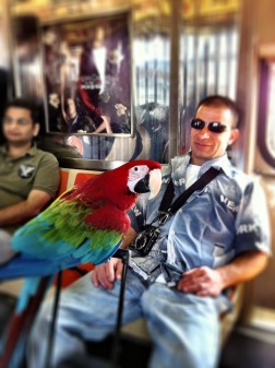 REO riding the subway #iphoneography #photography