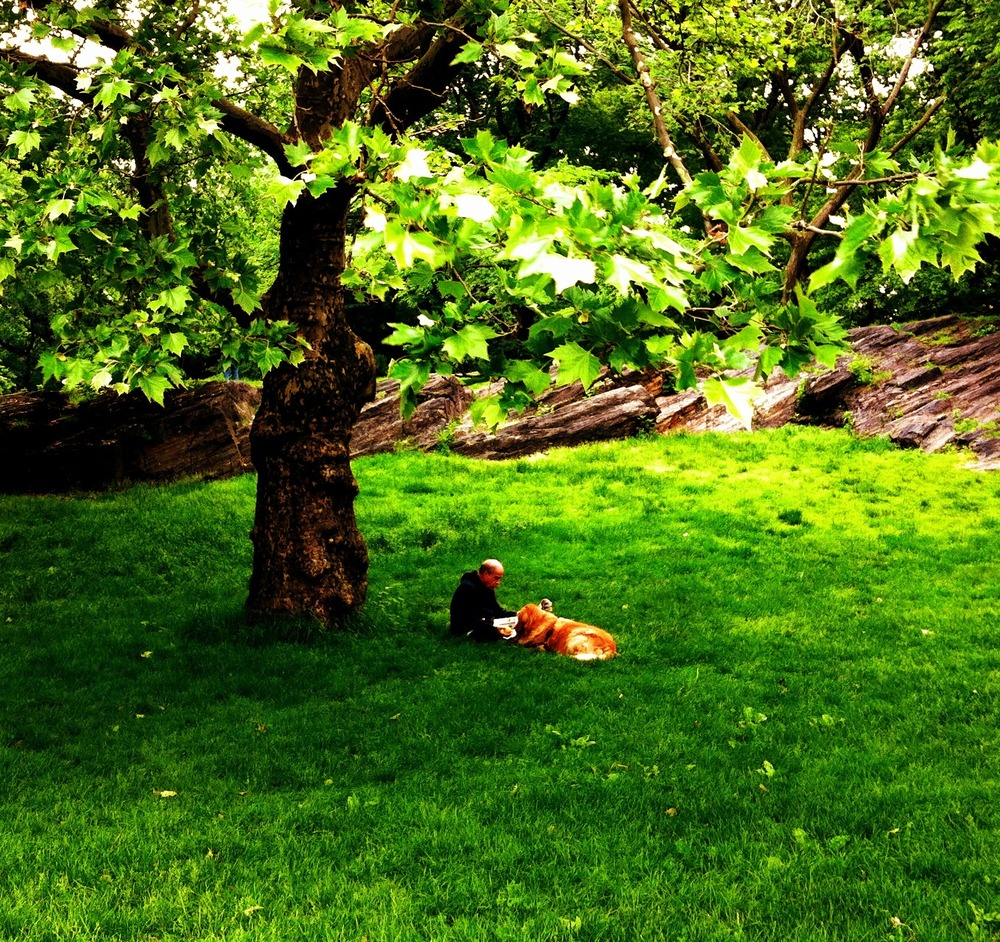 Ingredients for relaxation #iphonegraphy #photography #centralpark