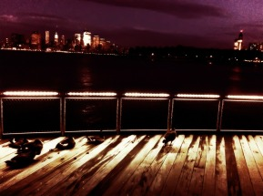 Even the ducks come out to enjoy the view iphoneography #photography NYC