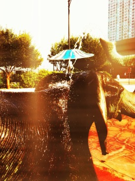 Heat wave with heat index around 115F #iphoneography #photography