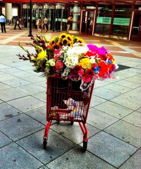 The color filled color full shopping cart #iphoneography #photography