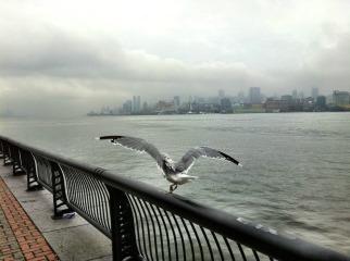 The calm before the storm #iphoneography #photography #hurricaneIrene #Irene #NYC #Hoboken