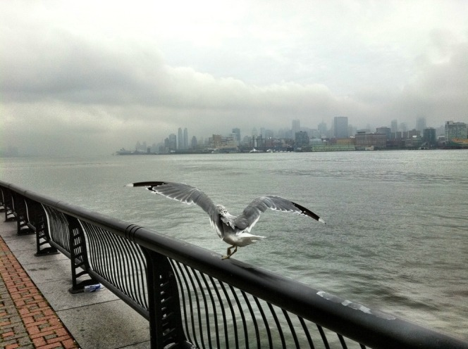 The calm before the storm #iphoneography #photography #hurricaneIrene #Irene #NYC #Hoboken