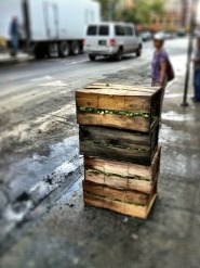 Cartons full of greens on the sidewalk #iphoneography #photography #streetphotography #Chinatown #NYC