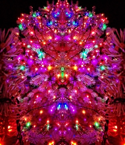 Looking up to a Christmas tree #iphoneography #photography #christmas #holidays