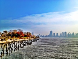 The contest, vibrance vs livid #iphoneography #photography #nyc #fall