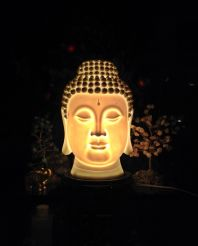 The mind is everything. What you think you become #iphoneography #photography #buddha