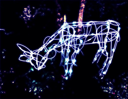 do a deer a glowing deer #iphoneography #photography #holiday #jerseycity