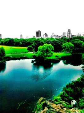 The greens of Central park