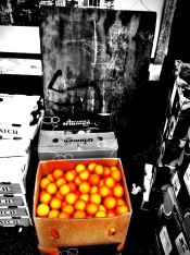 A box full of Oranges