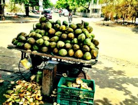 Tender coconuts, we used to buy on the streets