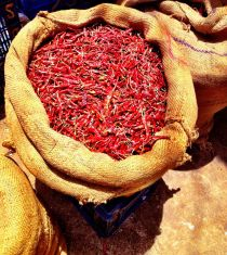 Red hot chili pepper #iphoneography #photography #indiA