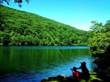 carefree fishing