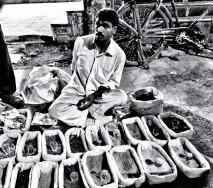 Vendor of spice
