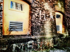 The windows which once hummed with power, power house jersey city #iphoneography #photography #jerseycity