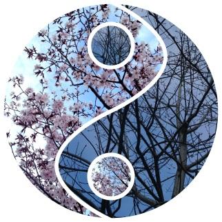 Yin and Yang, fall and spring