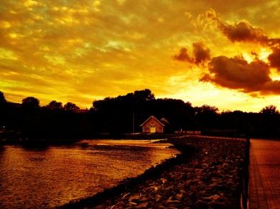 The golden sun set